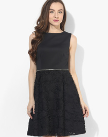 Dorothy Perkins Black Colored Embellished Skater Dress