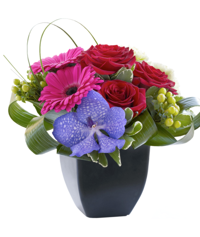 Gerbera and Vanda Orchid Arrangement