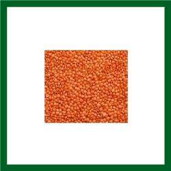 Moshuri Daal (মসূরী ডাল) - 1kg