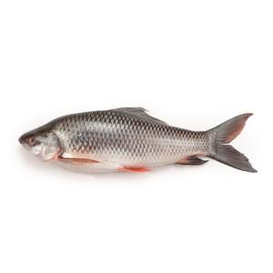Rui Fish (রুই মাছ) - 1pc