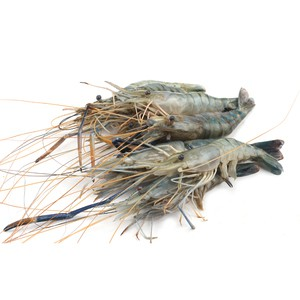 Galda Shrimp (গলদা চিংড়ী) - 1kg