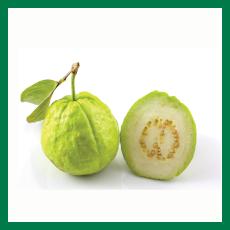 Guava (পেয়ারা) - 1kg