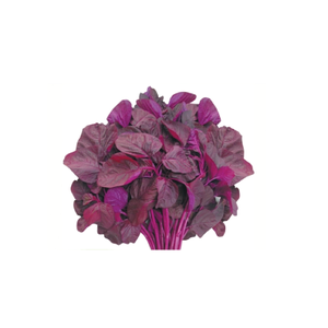 OB Red Spinach (Laal Shak) - 1bundle