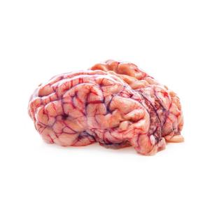 Mutton Brain (Mogoj) - 1pc