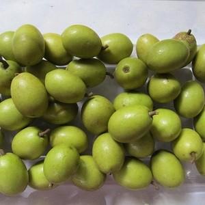 OB Olive (jolpai) - 500 gm
