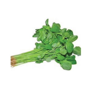 OB Spinach (Data Shak) - 1bundle