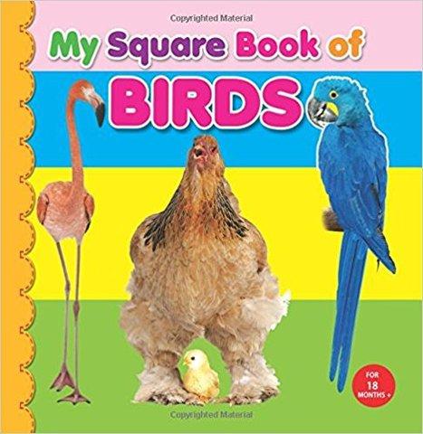 My Square Board Book: Birds