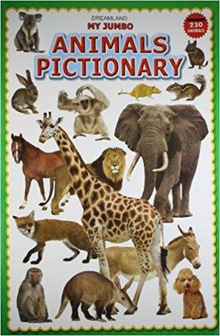 My Jumbo Animal Pictionary