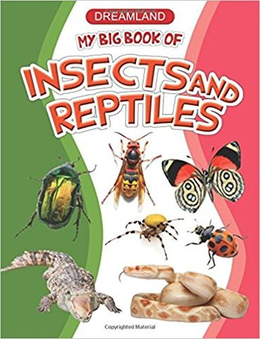 My Big Book of Insects and Reptiles