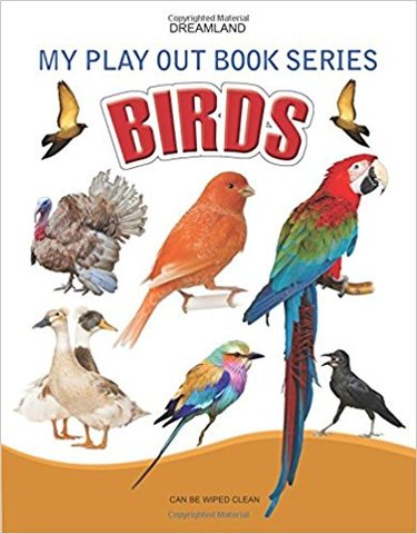 Birds (My Play Out Book)
