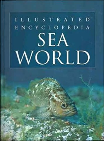 Sea World: 1 (Hardcover)