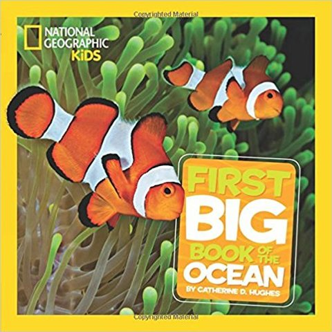 Little Kids First Big Book of the Ocean (Hardcover)