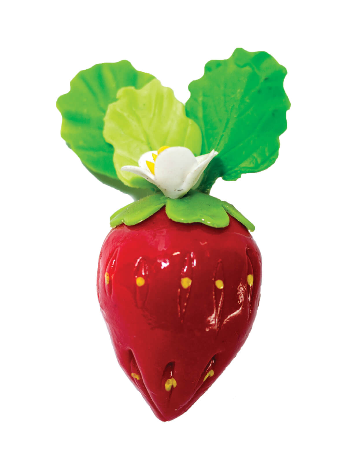 Strawberry Freeze Magnet