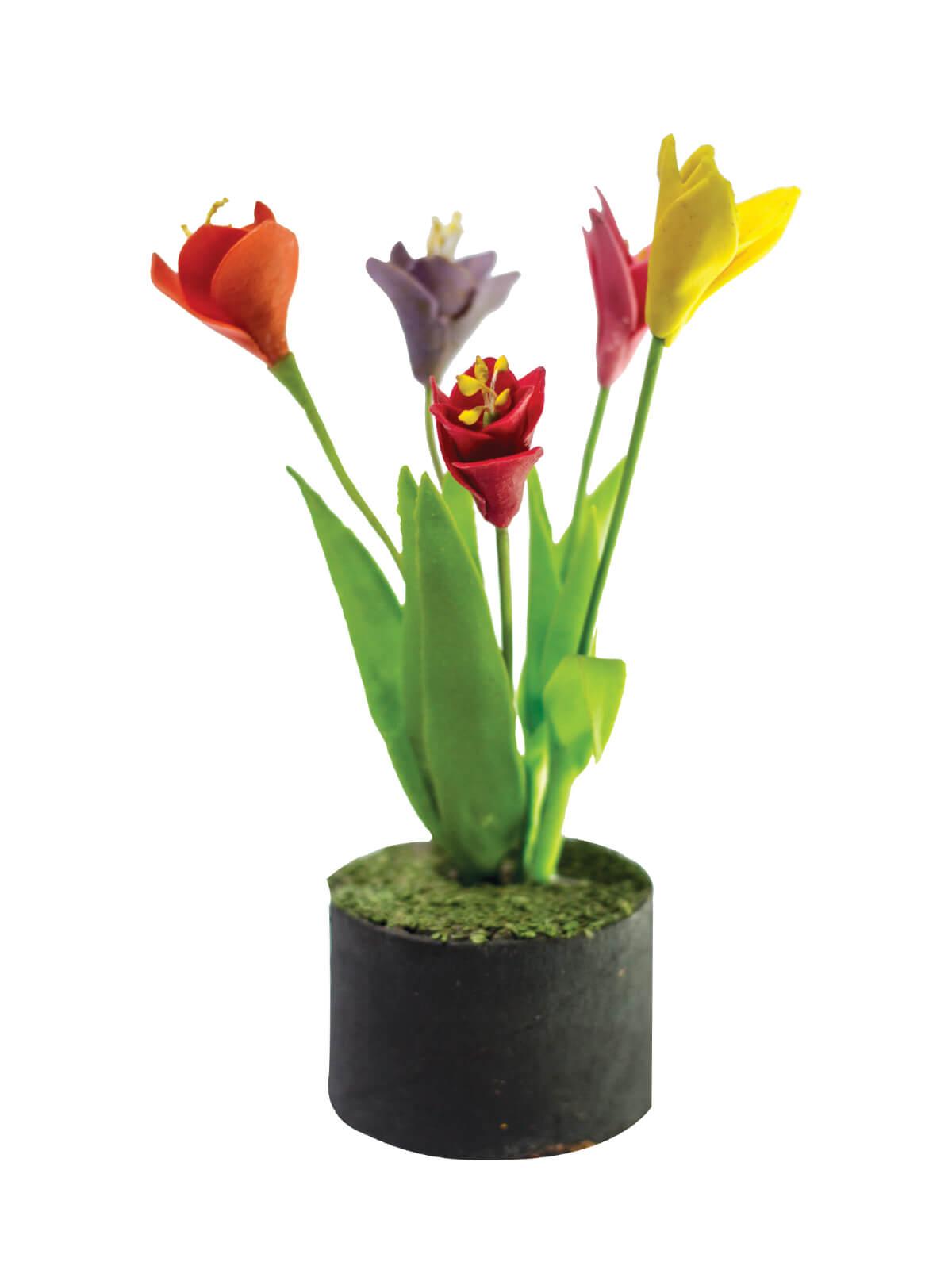 Tulip Tree Showpiece