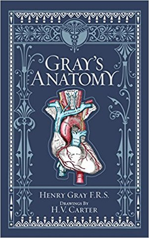 Gray's Anatomy (Barnes & Noble Leatherbound Classics) (Barnes & Noble Leatherbound Classic Collection)