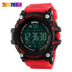 SKMEI 1227 SmartWatch