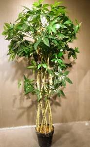 Artificial Plant/9-508