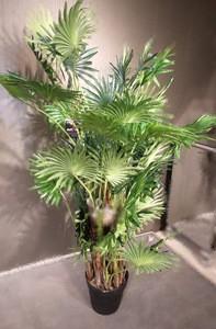 Artificial Plant/8499