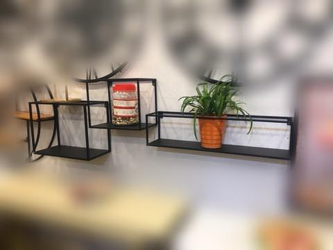 Wall Plant Rack/501
