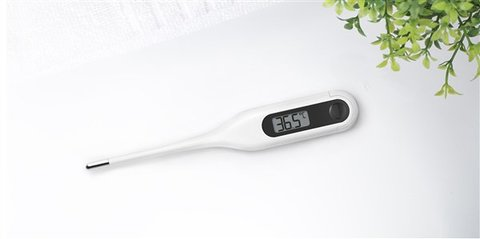 Xiaomi Mijia Digital Medical Thermometer