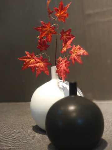 Vase/1506-1W