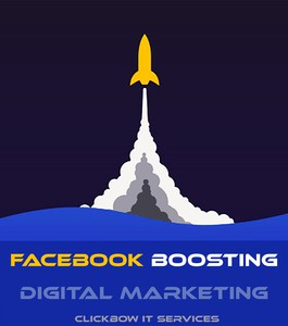 Facebook Marketing (*Per Dollar)