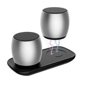SARDiNE F1 Aluminum Alloy Bluetooth True Stereo Speaker Support Bluetooth Stereo a Pair of Speakers Playing Together