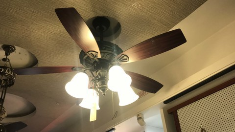 570/Classical Fan