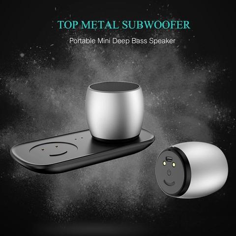 Sardine F1 TWS Bluetooth Speakers