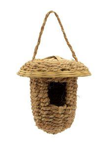 Weaver Bird's Nest (Babui Pakhir Basa)