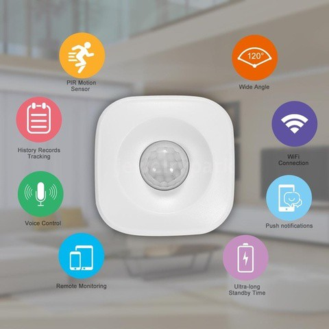 WiFi PIR Motion Sensor Human Body Infrared Security Alarm Detector