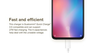 Mi 27w Fast Charging Adapter With Type C Cable