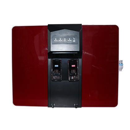 5 Stage RO Water Purifier Aqua Max